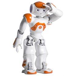 Aldebaran Robotics NAO